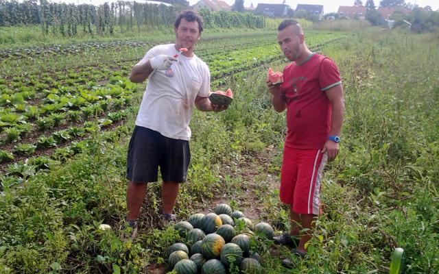 Wassermelonenverkostung-Gigi-u-Vali-640x4001